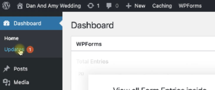 Update plugins WordPress